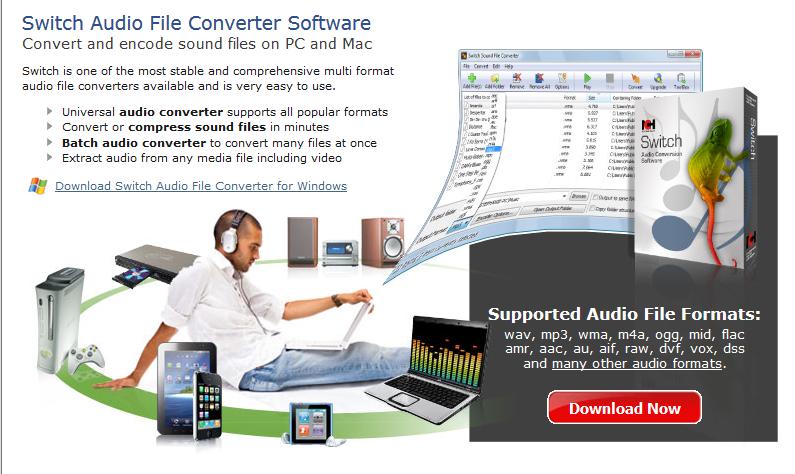 Switch Audio File Converter 6.24